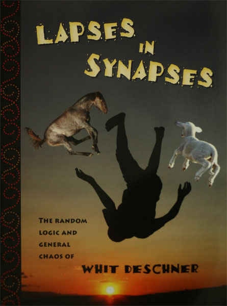 lapses-in-synapses-whit-deschner